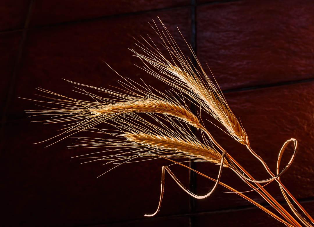 2-barley-athens-dakota-beer-pub-brewery-argyroupoli-ilioupoli-glyfada-regions-