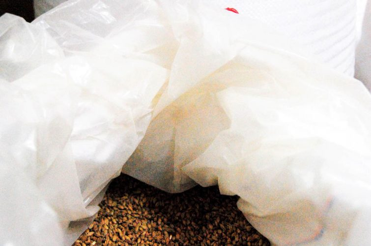 Sack of malt dakota beer pub elliniko argyroupoli glyfada region - 2