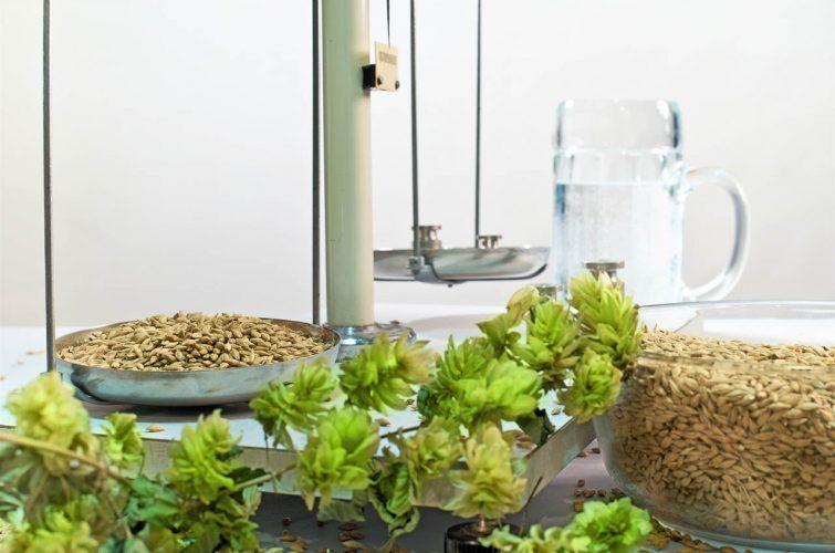 Beer preparing ingredients for brewering dakota beer argyroupoli - 6