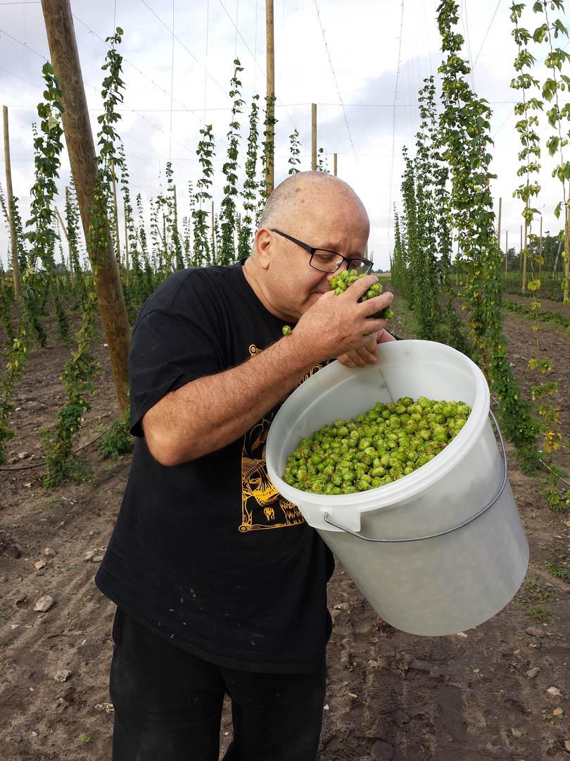 6-fresh-hops-for-brewing-beer-athens-dakota-beer-pub-southern-suburbs-argyroupoli-ilioupoli-glyfada-regions